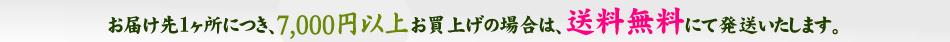 梅肉エキス専門店 紀州の梅蔵 お届け先1ヶ所につき、5000円以上お買い上げの場合は送料無料です。
